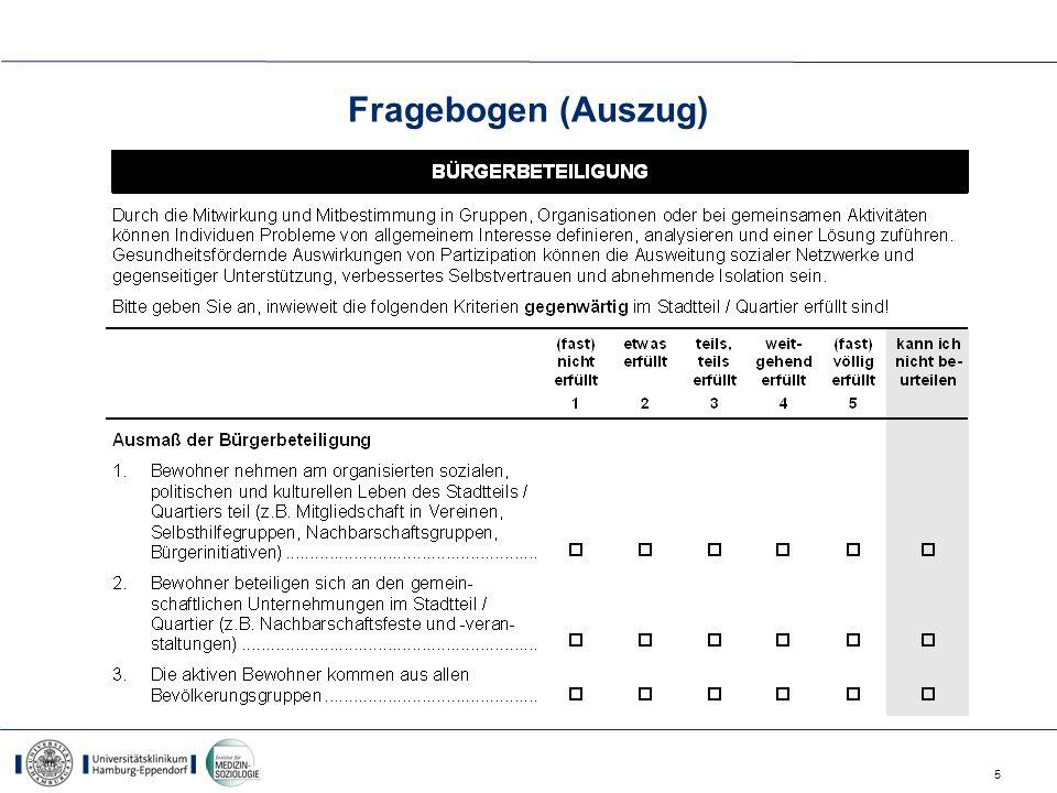 Fragebogen (Auszug)