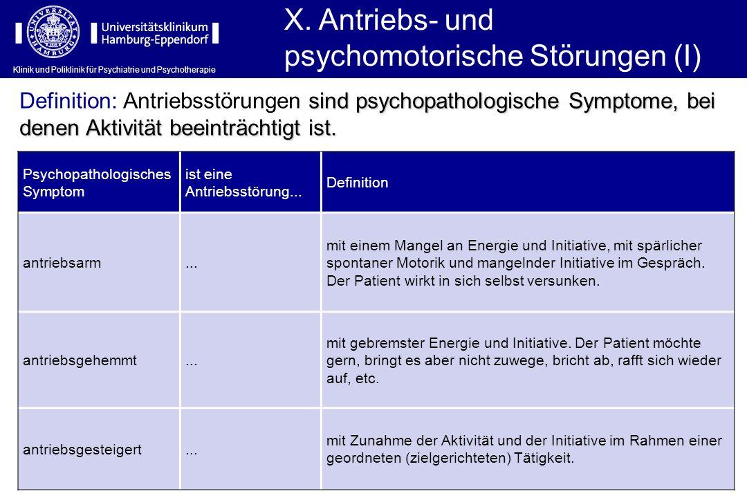 X. Antriebs- und psychomotorische Störungen (I)