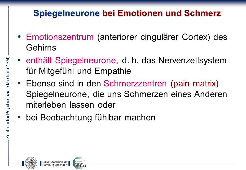 Spiegelneurone bei Emotionen und Schmerz