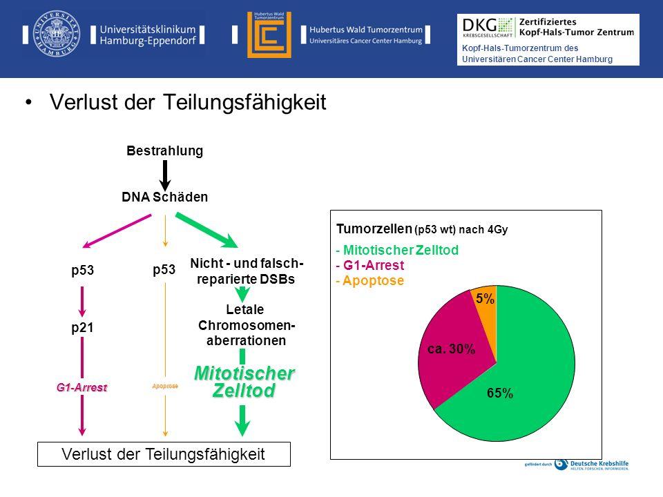 Nicht - und falsch- reparierte DSBs Chromosomen- aberrationen