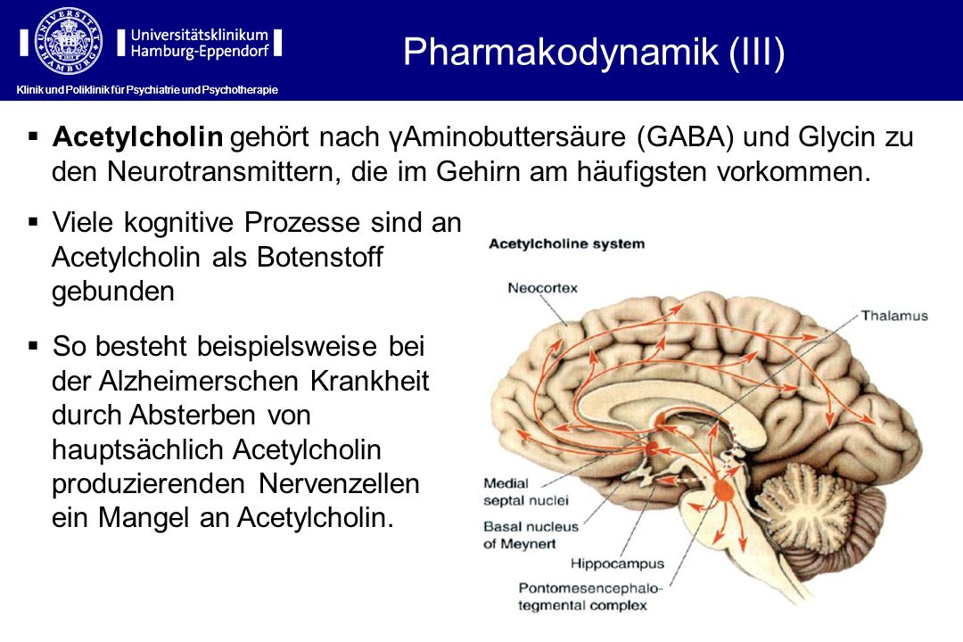 Pharmakodynamik (III)