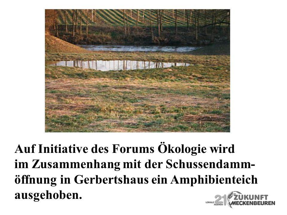 Auf Initiative des Forums Ökologie wird