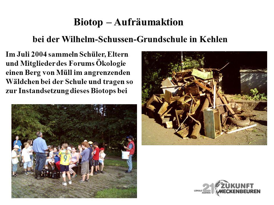 Biotop – Aufräumaktion