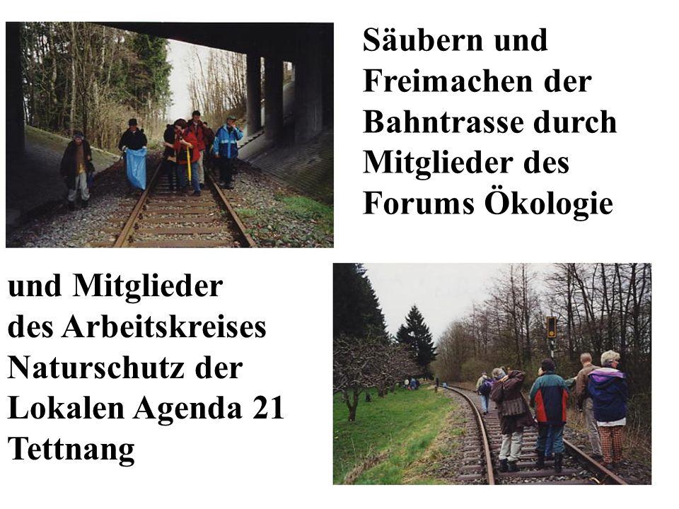 Säubern und Freimachen der. Bahntrasse durch. Mitglieder des. Forums Ökologie. und Mitglieder. des Arbeitskreises.