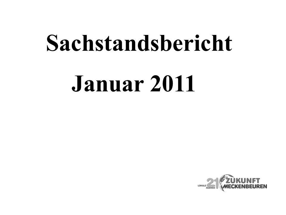 Sachstandsbericht Januar 2011