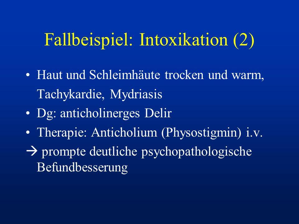 Fallbeispiel: Intoxikation (2)