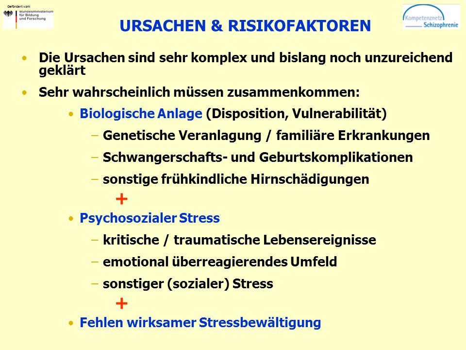 URSACHEN & RISIKOFAKTOREN