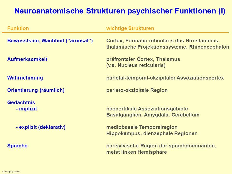 Neuroanatomische Strukturen psychischer Funktionen (I)