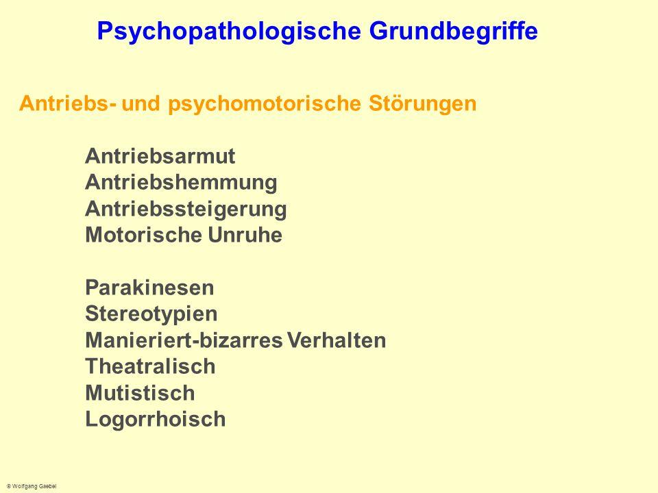 Psychopathologische Grundbegriffe