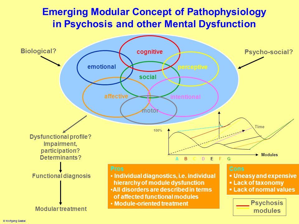 Dysfunctional profile Impairment, participation