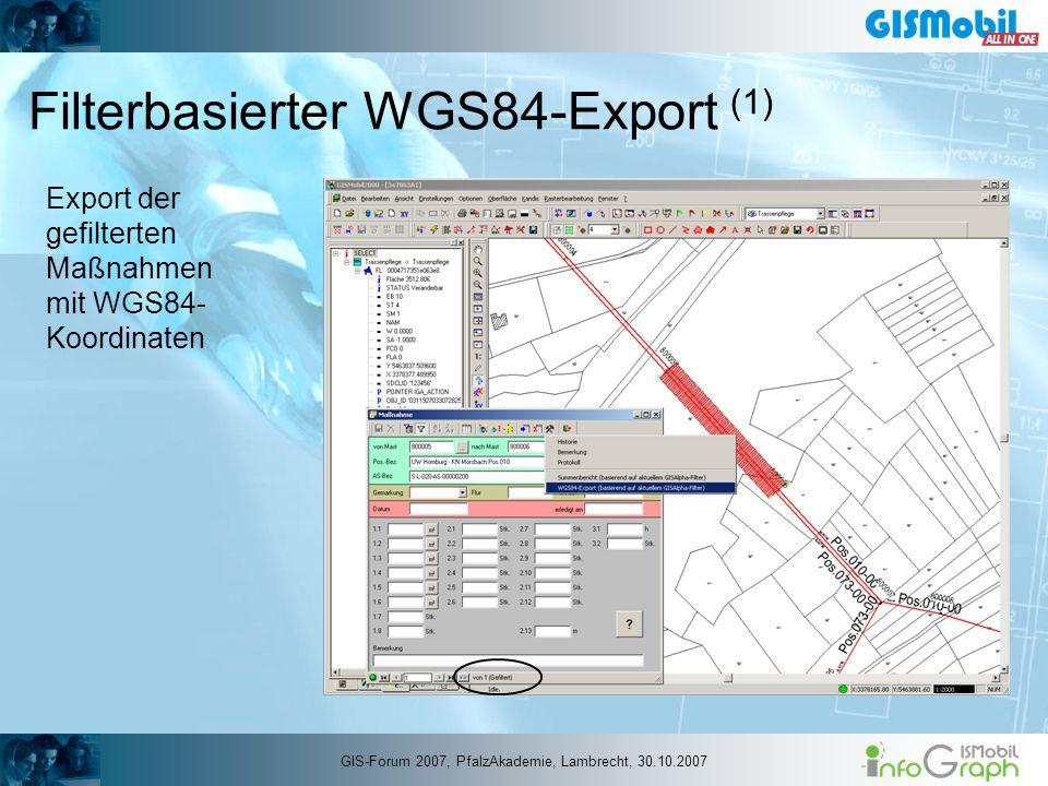 Filterbasierter WGS84-Export (1)