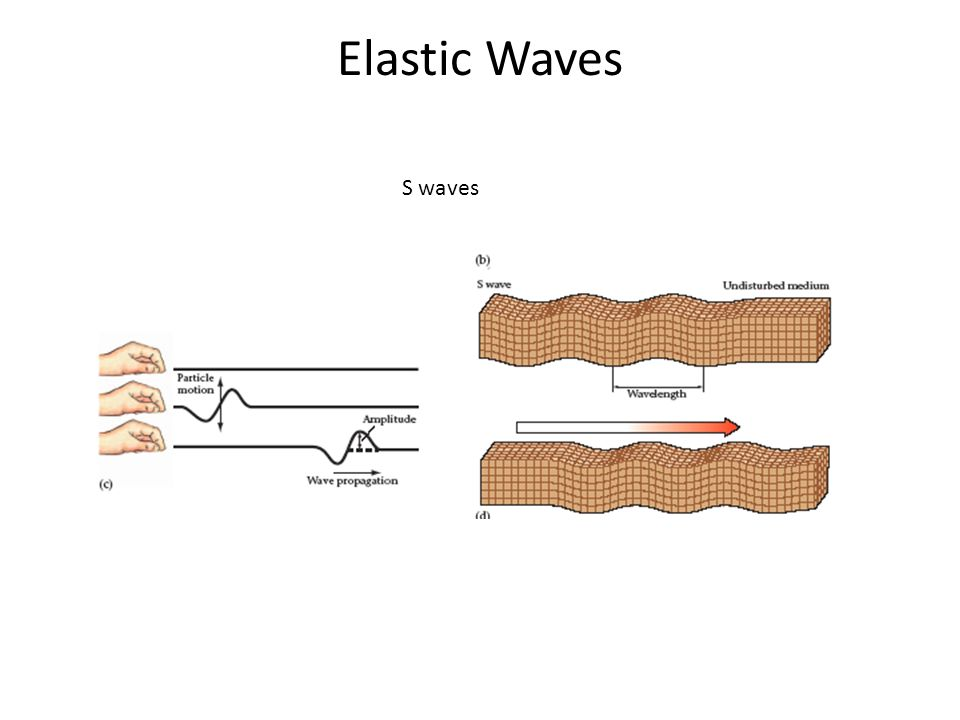 Elastic Waves S waves