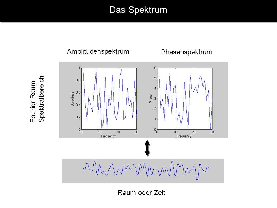 Das Spektrum Amplitudenspektrum Phasenspektrum Spektralbereich