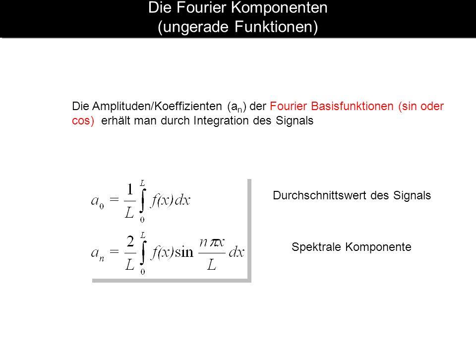 Die Fourier Komponenten (ungerade Funktionen)