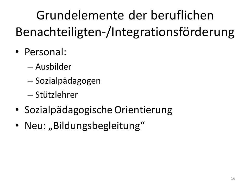 Grundelemente der beruflichen Benachteiligten-/Integrationsförderung