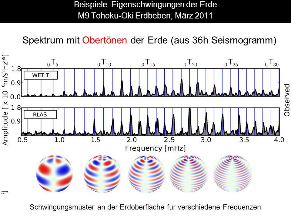 Schwingungsmuster an der Erdoberfläche für verschiedene Frequenzen