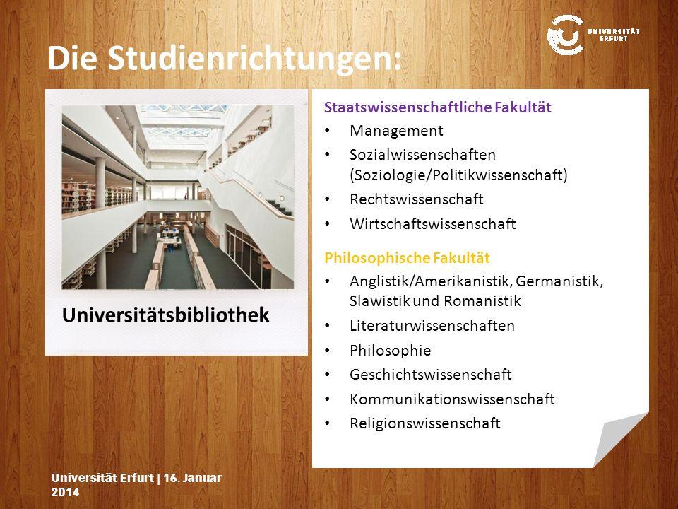 Die Studienrichtungen: