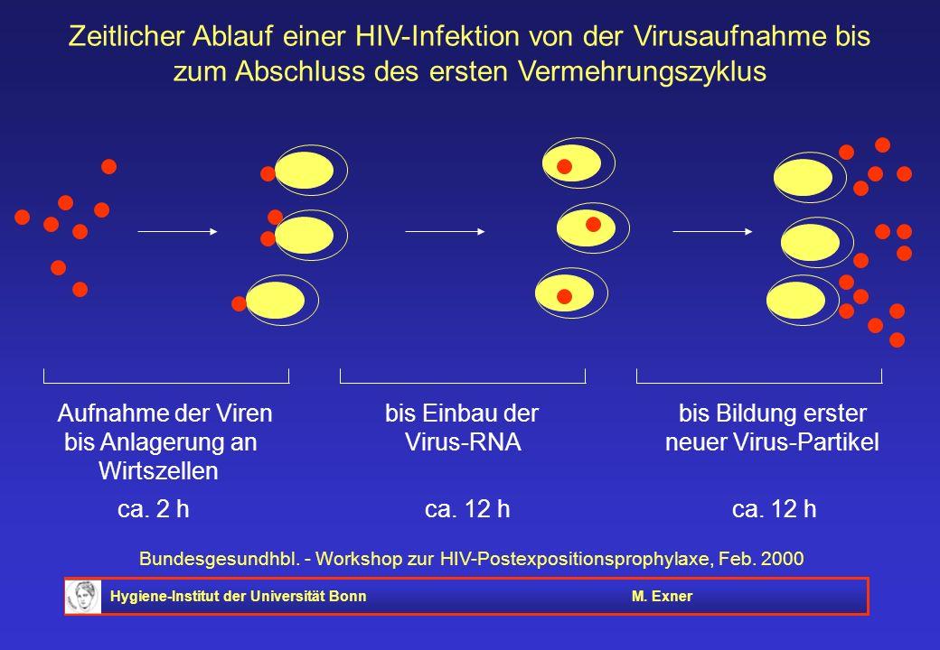 Zeitlicher Ablauf einer HIV-Infektion von der Virusaufnahme bis zum Abschluss des ersten Vermehrungszyklus