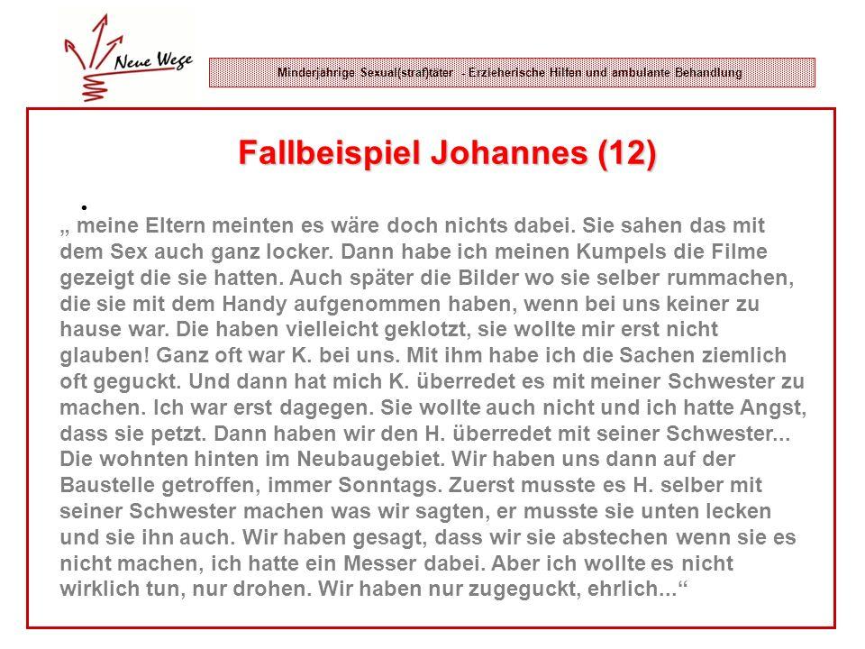 Fallbeispiel Johannes (12)