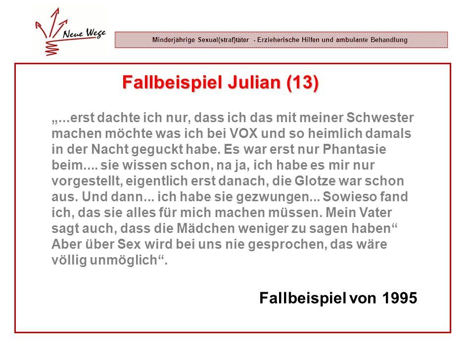 Fallbeispiel Julian (13)