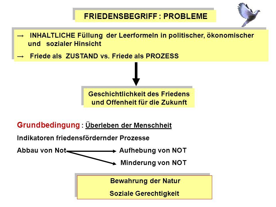 FRIEDENSBEGRIFF : PROBLEME