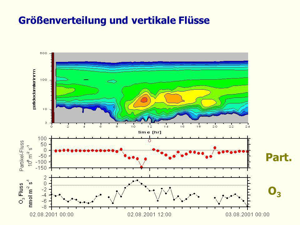 Größenverteilung und vertikale Flüsse