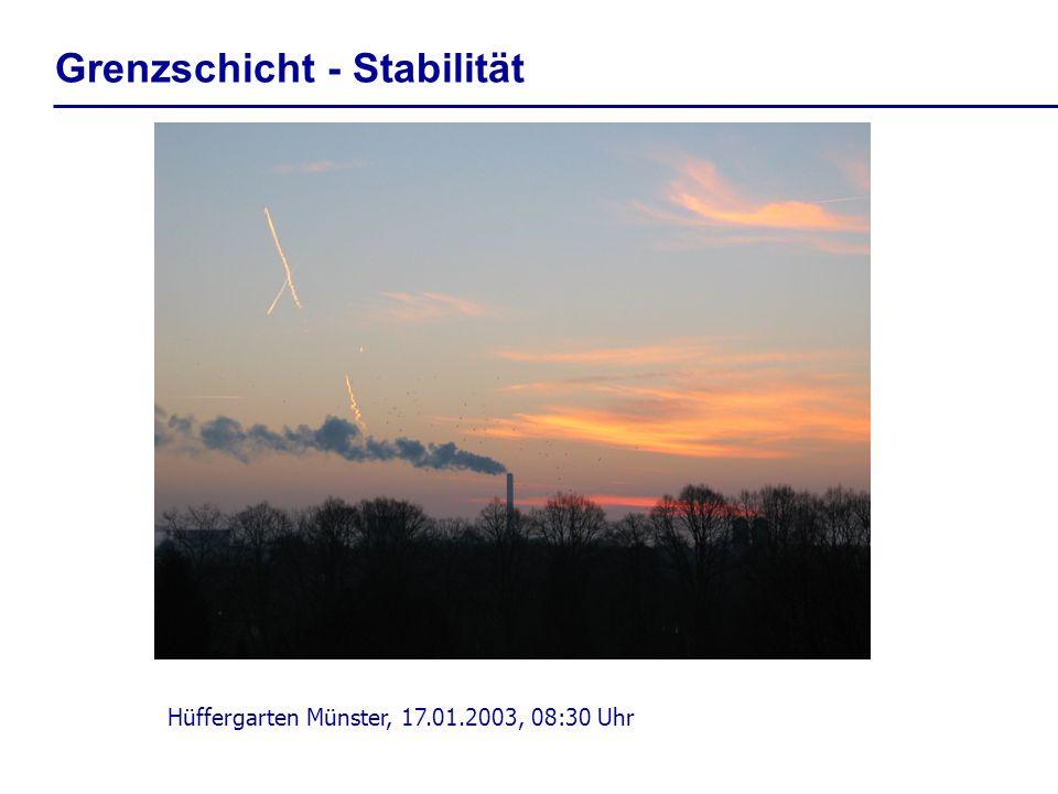 Hüffergarten Münster, 17.01.2003, 08:30 Uhr