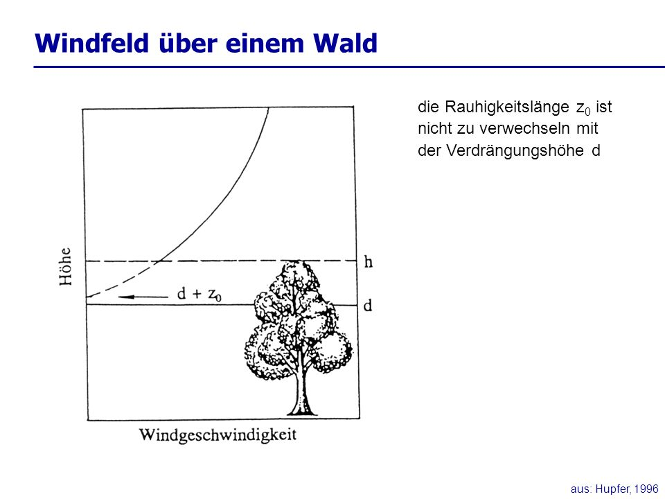 Windfeld über einem Wald