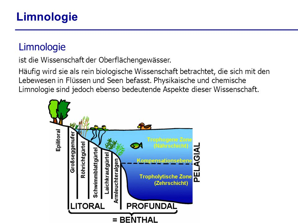 Limnologie Limnologie ist die Wissenschaft der Oberflächengewässer.