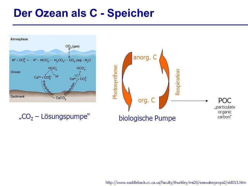 Der Ozean als C - Speicher