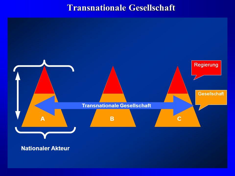 Transnationale Gesellschaft
