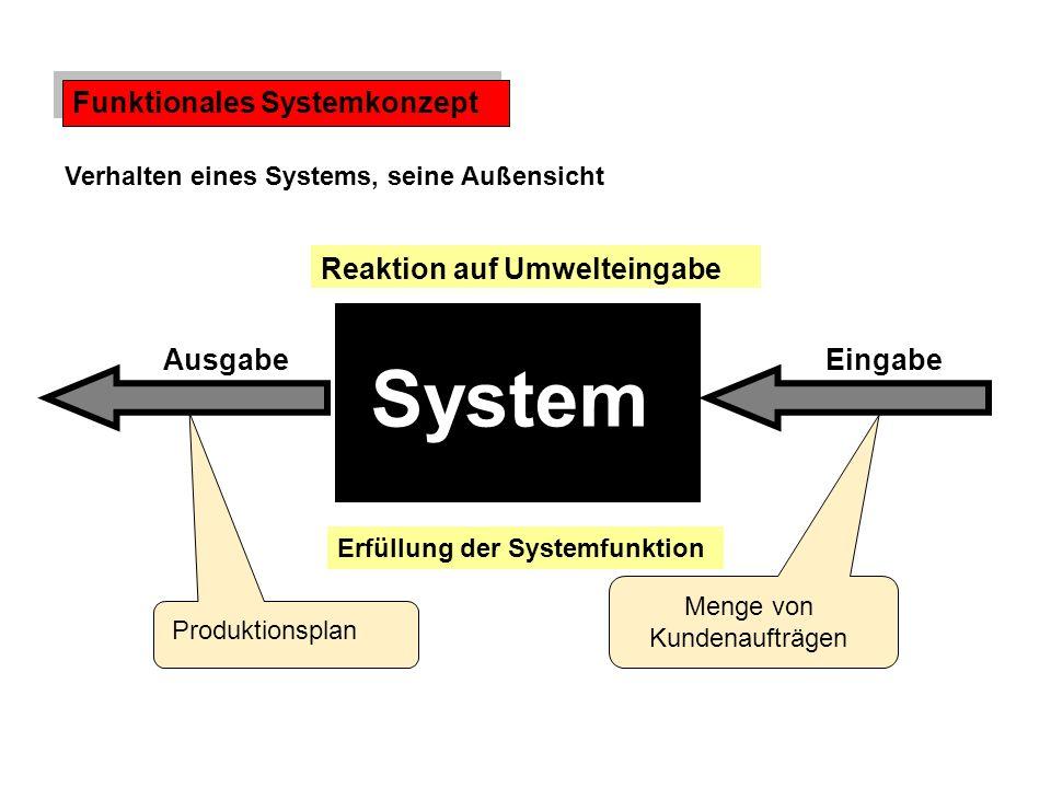 System Funktionales Systemkonzept Reaktion auf Umwelteingabe Ausgabe