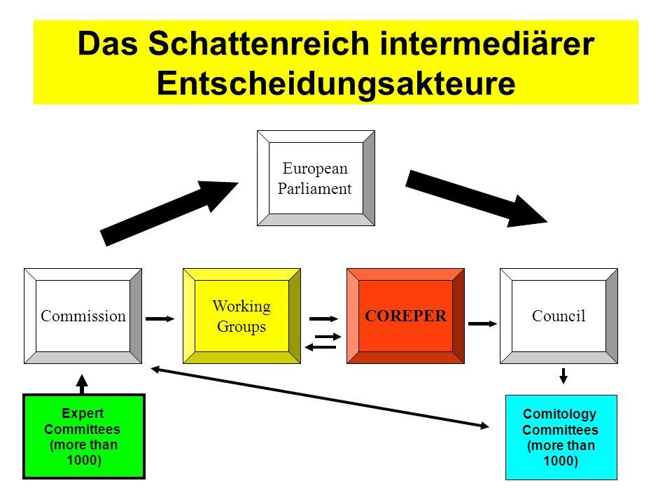 Das Schattenreich intermediärer Entscheidungsakteure