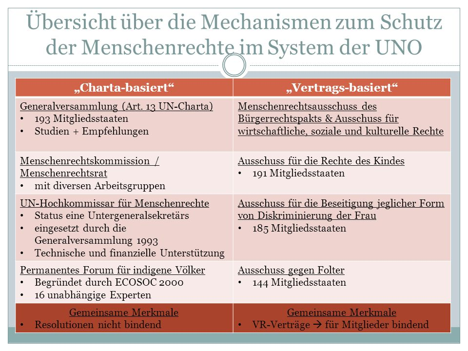 Übersicht über die Mechanismen zum Schutz der Menschenrechte im System der UNO