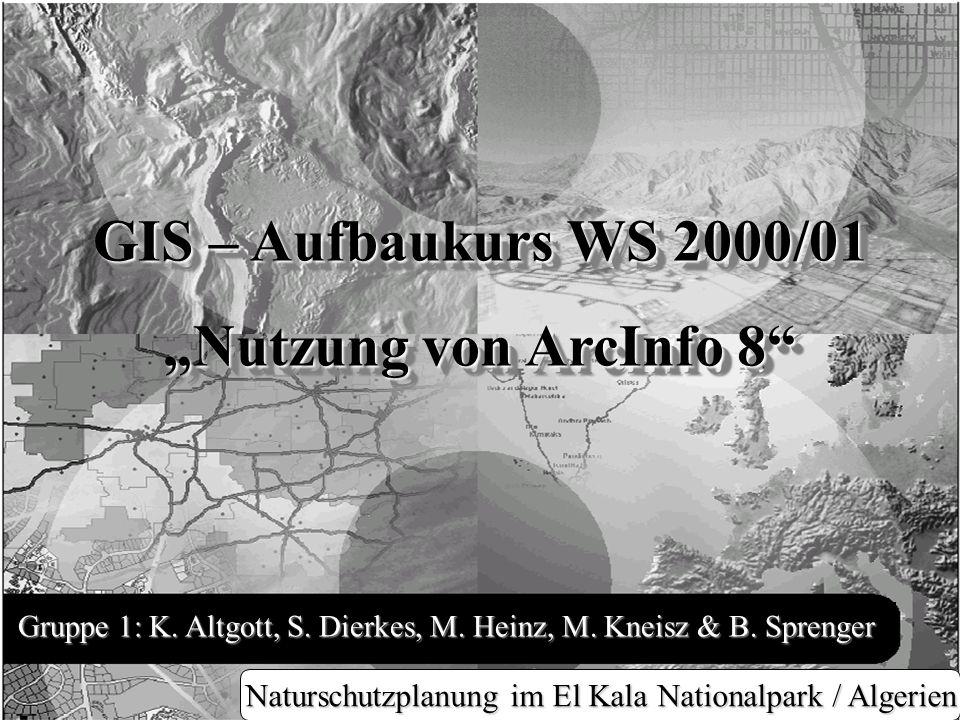 """GIS – Aufbaukurs WS 2000/01 """"Nutzung von ArcInfo 8"""