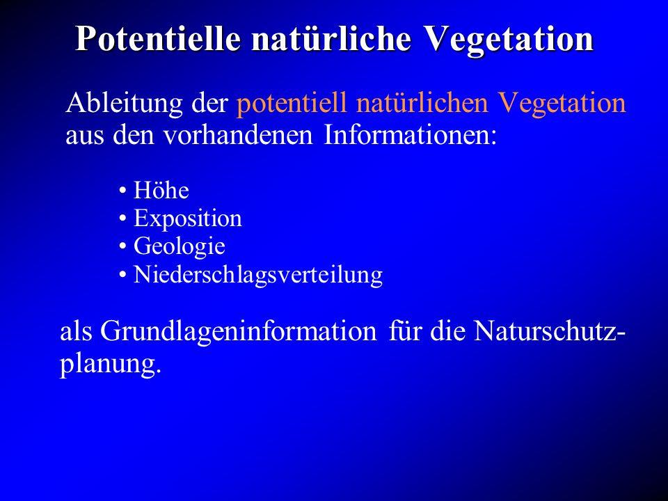 Potentielle natürliche Vegetation