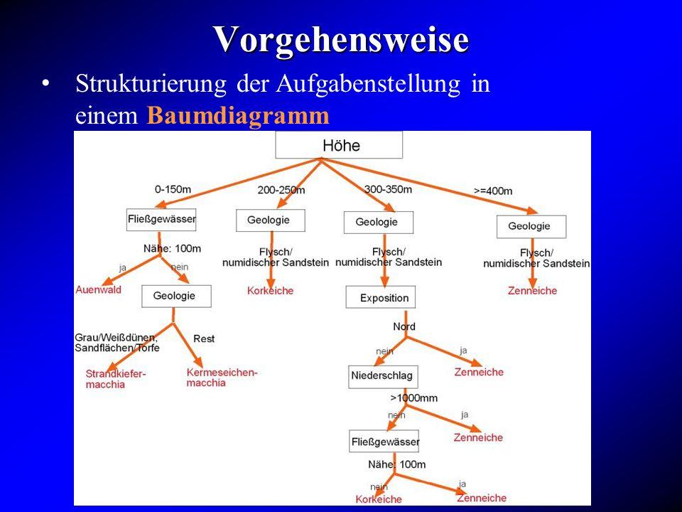 Vorgehensweise Strukturierung der Aufgabenstellung in einem Baumdiagramm