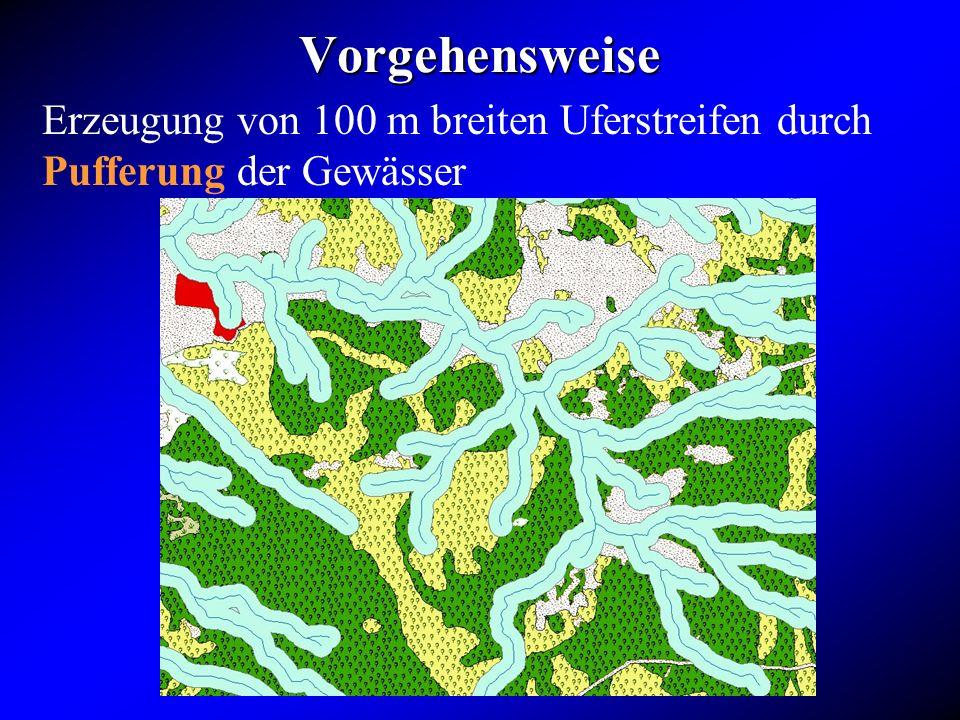 Vorgehensweise Erzeugung von 100 m breiten Uferstreifen durch