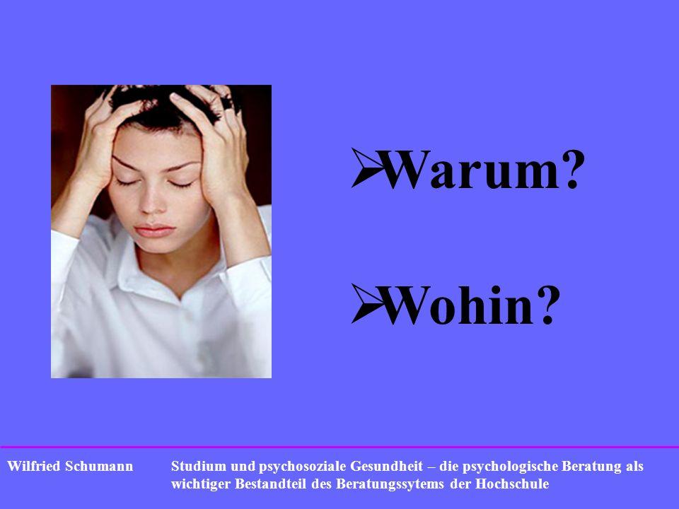 Warum Wohin Wilfried Schumann
