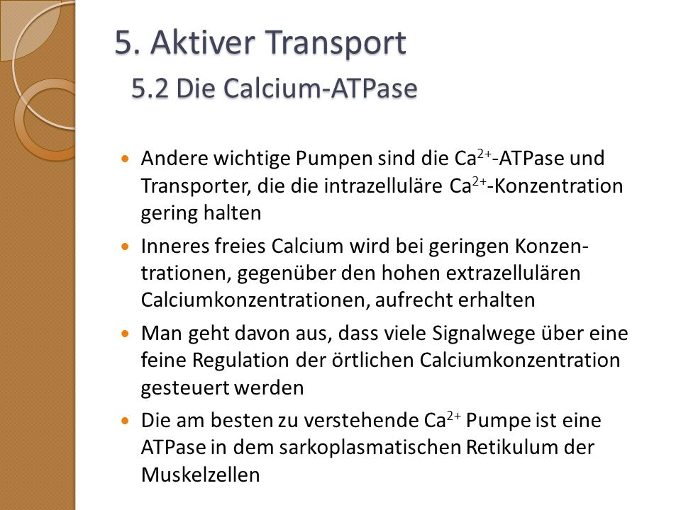 5. Aktiver Transport 5.2 Die Calcium-ATPase