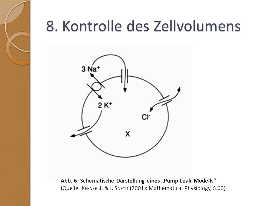 8. Kontrolle des Zellvolumens