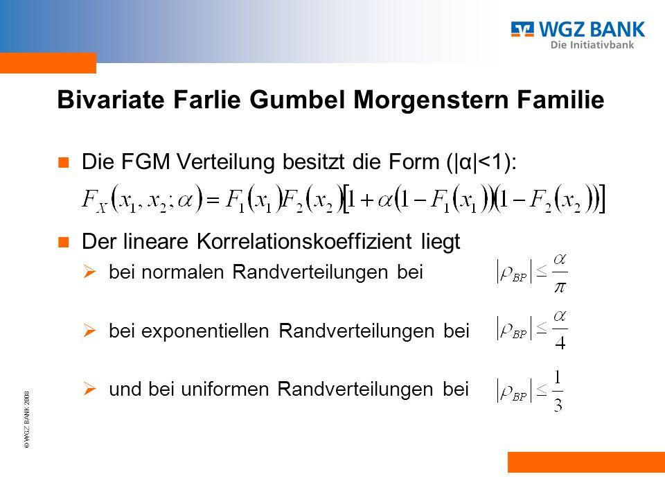 Bivariate Farlie Gumbel Morgenstern Familie