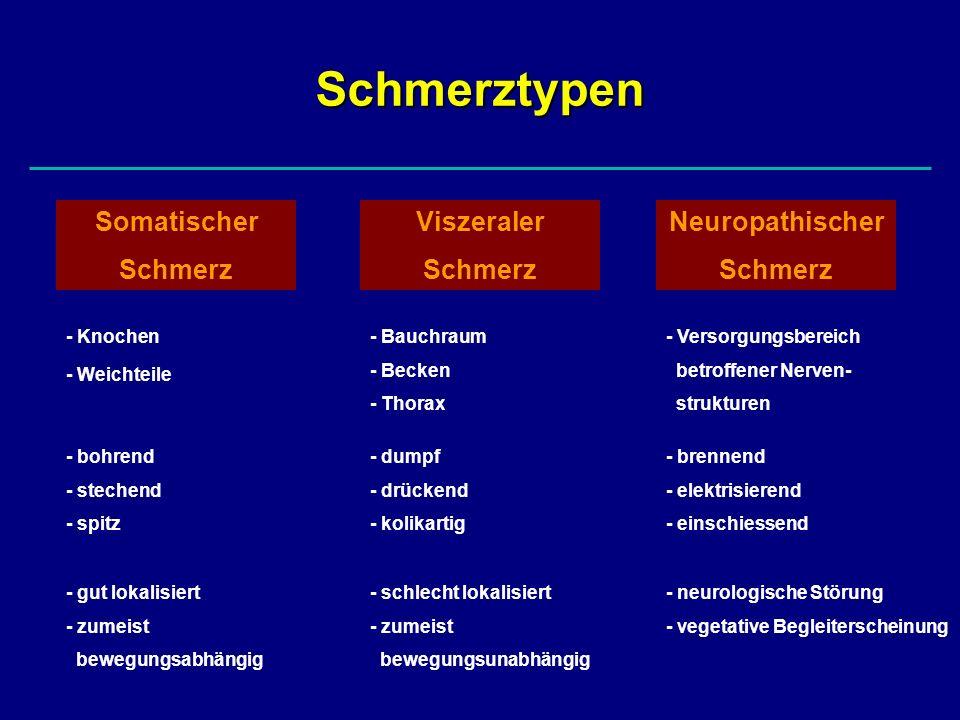 Schmerztypen Somatischer Schmerz Viszeraler Schmerz Neuropathischer