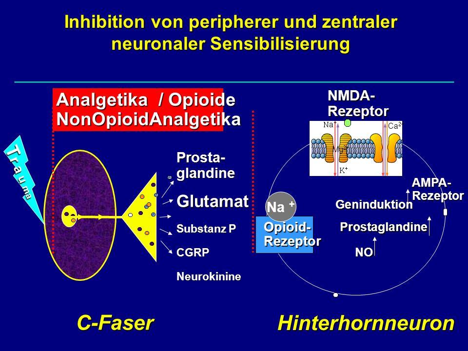Inhibition von peripherer und zentraler neuronaler Sensibilisierung
