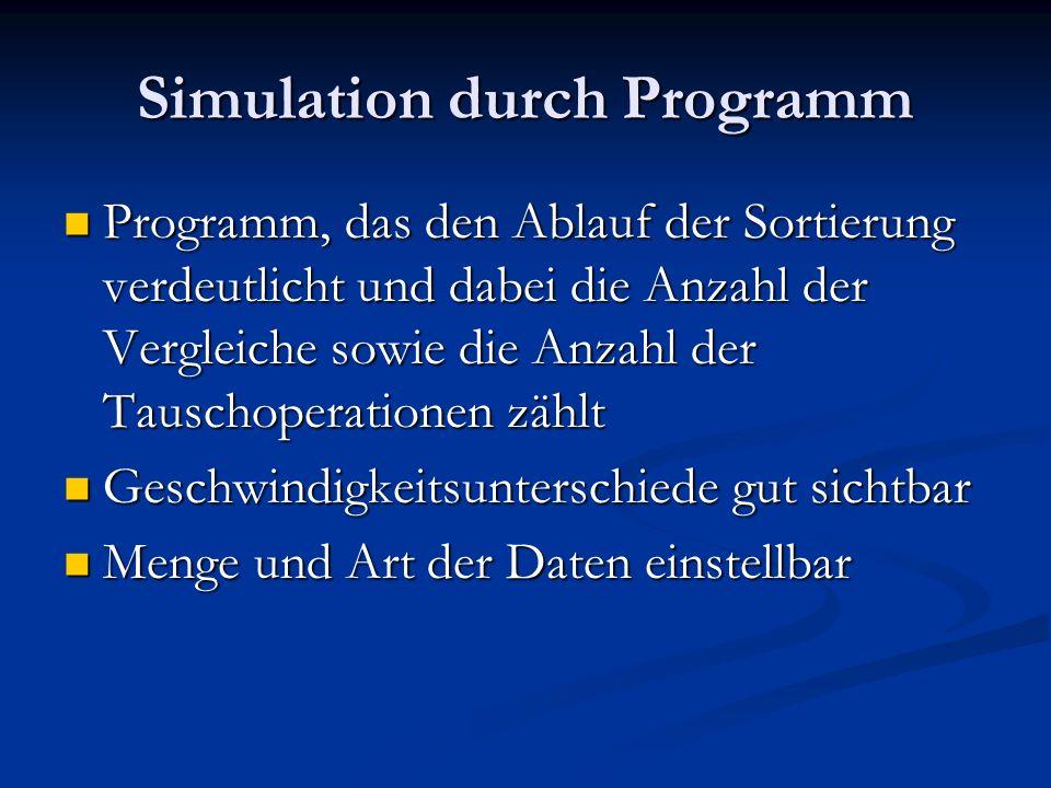 Simulation durch Programm