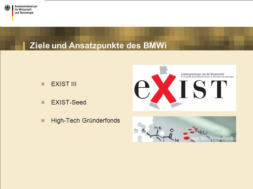 Ziele und Ansatzpunkte des BMWi