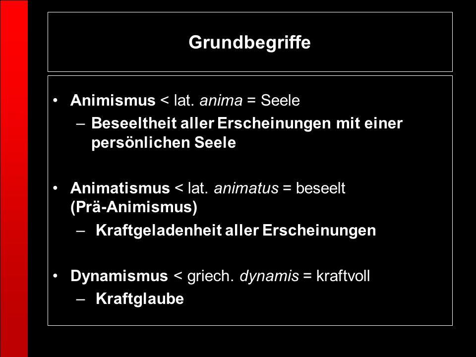 Grundbegriffe Animismus < lat. anima = Seele