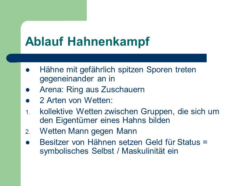 Ablauf HahnenkampfHähne mit gefährlich spitzen Sporen treten gegeneinander an in. Arena: Ring aus Zuschauern.