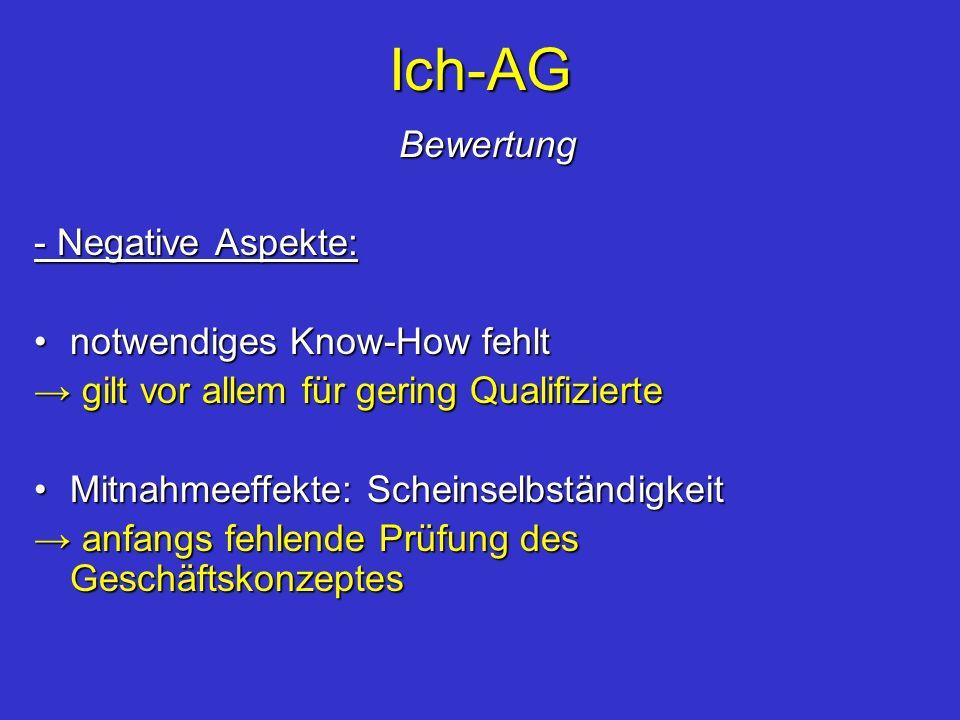 Ich-AG Bewertung - Negative Aspekte: notwendiges Know-How fehlt