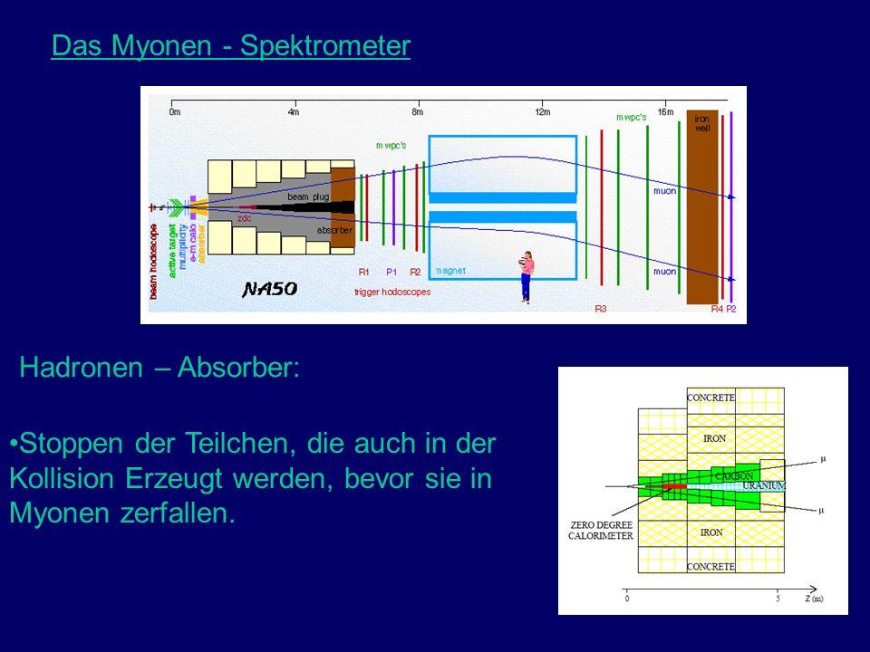 Das Myonen - Spektrometer